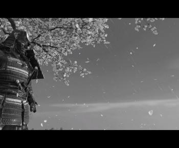 [Test] Ghost of Tsushima : le sabre qui cache la forêt