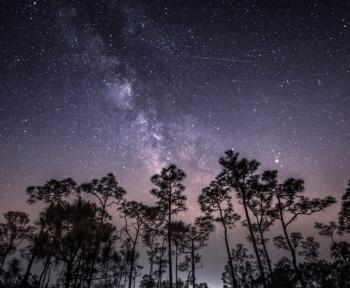 Comment observer l'essaim d'étoiles filantes des Delta Aquarides Sud ce mercredi 29 juillet?