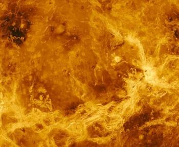 Et si la vie avait voyagé de la Terre à Vénus ?