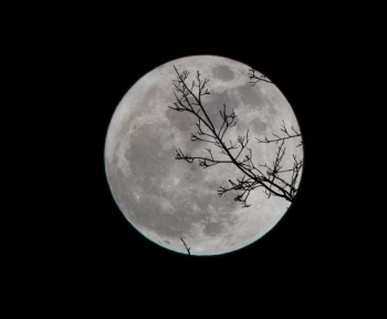La Lune, futur observatoire de recherche d'une vie extraterrestre intelligente ?