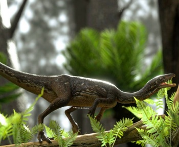À quoi ressemblait le cerveau de ce dinosaure?