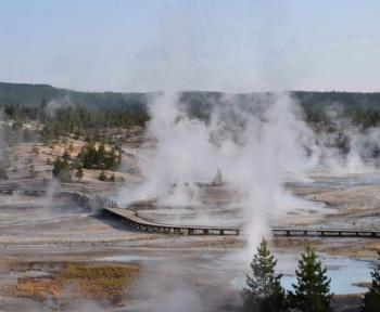 Banni de Yellowstone pour avoir tenté de faire frire des poulets dans une source chaude