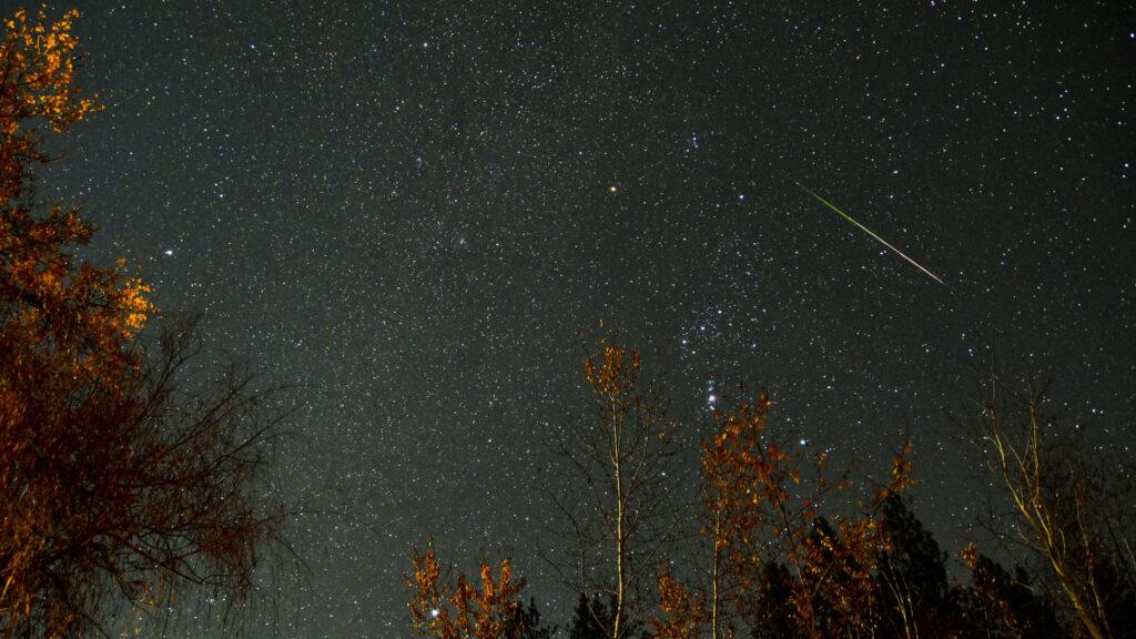 Comment voir l'essaim d'étoiles filantes des Léonides dans la nuit du 16 au 17 novembre?