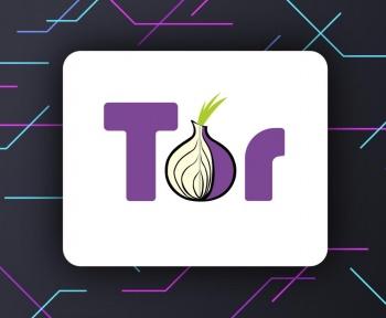 À quoi sert Tor ? Presque pas à aller sur le dark web