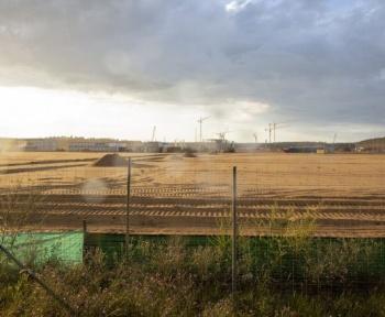 Les plans de Tesla pour la Gigafactory de Berlin contrecarrés par… une population de lézards