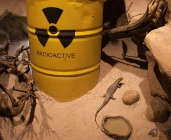 110 000 personnes auraient été contaminées par les essais nucléaires français
