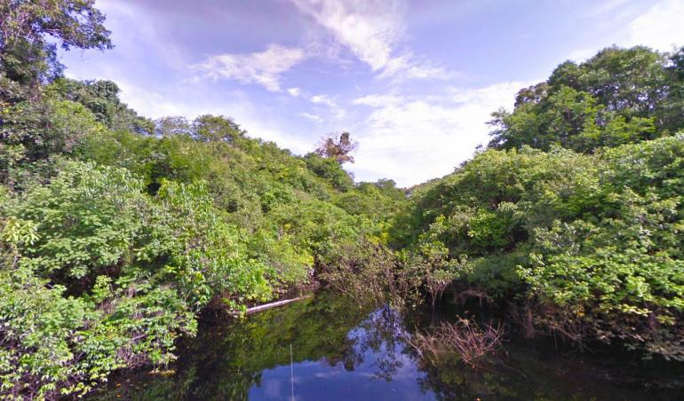 Il y a un gros problème avec l'Amazonie